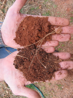 Examples of soil improvement at eprida bioenergy lists for Soil is an example of